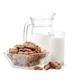 Vetro di latte, biscotti di pepita di cioccolato Immagini Stock Libere da Diritti