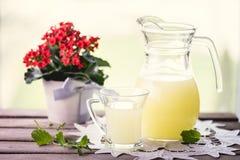 Vetro di siero di latte Immagini Stock