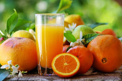 Vetro di succo d'arancia Fotografia Stock
