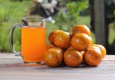 Vetro di succo d'arancia all'aperto con il fondo delle foglie verdi Fotografia Stock Libera da Diritti