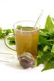 Vetro di tè di erbe Fotografia Stock