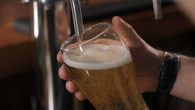 Vetro di versamento del barista della birra alla spina Fine in su archivi video