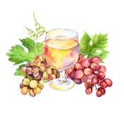 Vetro di vino bianco, foglie di vite e bacche dell'uva watercolor illustrazione di stock
