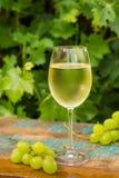 Vetro di vino con vino bianco ghiacciato, terrazzo all'aperto, tasti del vino Fotografia Stock