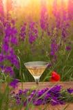Vetro di vino contro paesaggio rurale, raccolta del fiore Fotografie Stock Libere da Diritti