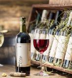 Vetro di vino e della bottiglia di vino Immagine Stock Libera da Diritti