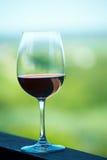 Vetro di vino rosso Immagini Stock Libere da Diritti