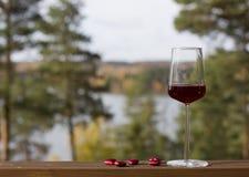 Vetro di vino rosso Fotografie Stock