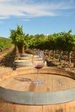 Vetro di vino sul barilotto Fotografia Stock