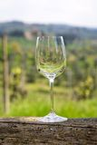 Vetro di vino vuoto fotografie stock libere da diritti