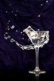 Vetro di vodka Immagine Stock Libera da Diritti