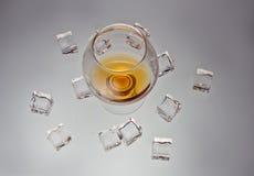 Vetro di whiskey Immagini Stock