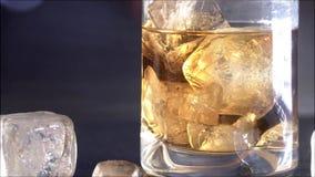 Vetro di whiskey con ghiaccio sul fondo del bokeh video d archivio