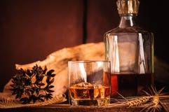 Vetro di whiskey con il decantatore del ghiaccio sulla tavola di legno Fotografie Stock Libere da Diritti