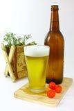 Vetro e bottiglia con birra Fotografie Stock Libere da Diritti