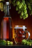 Vetro e bottiglia di birra con il luppolo Immagini Stock Libere da Diritti