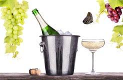 Vetro e bottiglia di champagne in secchiello del ghiaccio Fotografia Stock Libera da Diritti