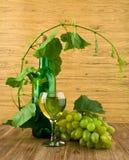 Vetro e bottiglia di vino con una vite Fotografie Stock Libere da Diritti