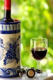 Vetro e bottiglia di vino rosso Fotografie Stock Libere da Diritti