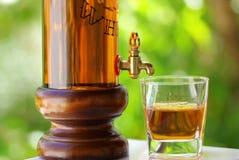 Vetro e bottiglia di whisky Fotografia Stock