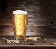 Vetro glassato di birra sulla tavola di legno fotografia stock libera da diritti