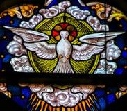 Vetro macchiato - colomba, Spirito Santo fotografia stock