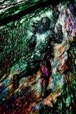 Vetro macchiato della cattedrale di Hereford moderno immagine stock libera da diritti