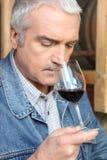 Vetro sentente l'odore del Vintner di vino rosso Fotografie Stock