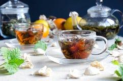 Vetro verde del tè del oolong della tazza Immagini Stock