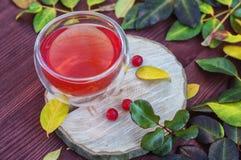 Vetro/vetro con una bevanda Immagini Stock