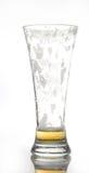 Vetro vuoto di birra Fotografia Stock