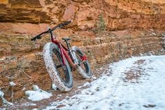 Vette fiets op canionsleep met sneeuw Royalty-vrije Stock Foto's