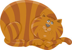 Vette het beeldverhaalillustratie van het kattenkarakter Stock Foto's