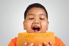 Vette jongen die cake eten stock afbeeldingen