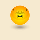Vette kattensmiley Royalty-vrije Stock Foto