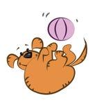 Vette oranje hond Royalty-vrije Stock Foto's
