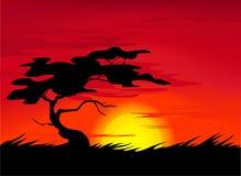 Vettore africano di paesaggio royalty illustrazione gratis