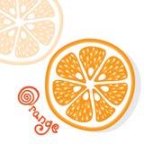 Vettore arancio degli agrumi Fotografia Stock Libera da Diritti