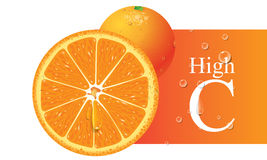 Vettore arancione Fotografia Stock Libera da Diritti