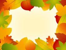 Vettore Autumn Leaves Frame su fondo Fotografia Stock