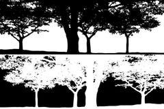 Vettore in bianco e nero della siluetta di scena degli alberi Fotografie Stock