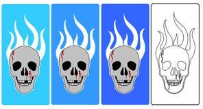 Vettore - crani Fotografia Stock