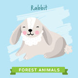Vettore del coniglio, animali della foresta Immagine Stock