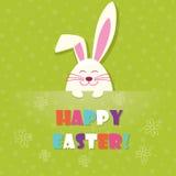 Vettore del coniglio di vettore di Pasqua Fotografie Stock