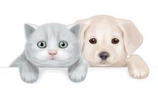 Vettore del cucciolo sveglio e del gattino che si nascondono dallo spazio in bianco. Immagine Stock Libera da Diritti