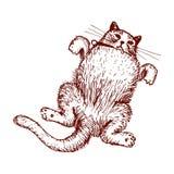 Vettore del disegno del gatto felice Fotografia Stock