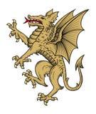 Vettore del drago dell'oro Immagine Stock