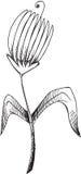 Vettore del fiore di schizzo di scarabocchio Immagini Stock Libere da Diritti