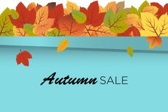 Vettore del fondo di Autumn Sale con le foglie di caduta alla cima della parete del turchese illustrazione di stock