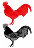 Vettore del gallo Fotografia Stock Libera da Diritti
